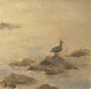 rocks_gull_fog