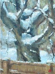 tree_study_3-medium