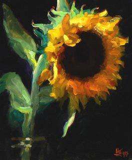 sunflower.0